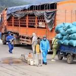 UBND tỉnh Hải Dương đề nghị các địa phương lân cận tạo điều kiện lưu thông hàng hóa