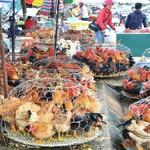 Gà dịch bệnh từ chợ đến bàn ăn