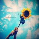Kết nối yêu thương: Hạnh phúc vẫn còn đủ chỗ cho ta