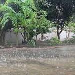 Dự báo thời tiết ngày 15/9: Cả ba miền đều có mưa dông
