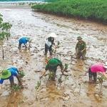 Thủ tướng Nguyễn Xuân Phúc đề xuất với LHQ các giải pháp ứng phó biến đổi khí hậu