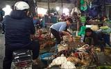Thực phẩm sạch hay bẩn:  Nhộn nhịp gia cầm không rõ nguồn gốc tại các Chợ