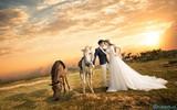4 cung hoàng đạo sẽ kết hôn vào năm 2021, phước lộc đầy nhà, hạnh phúc viên mãn