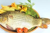 Dù thích đến mấy nhưng ăn 4 bộ phận này của cá thì chính là rước bệnh vào người