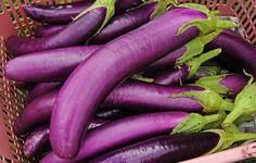 Những người tuyệt đối không nên ăn cà tím