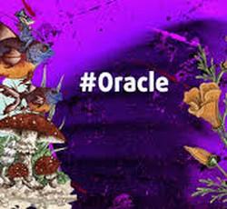 Bốc một lá bài Oracle để biết liệu bạn có thích ứng được với cuộc sống hôn nhân hay không