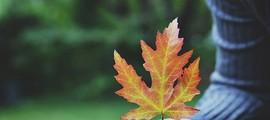 3 thói quen giúp bạn nuôi dưỡng lòng biết ơn mỗi ngày