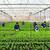 Động lực cho đổi mới mô hình tăng trưởng ngành nông nghiệp